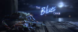 The Blues Crab 1
